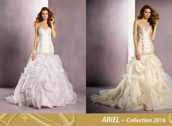 ARIEL–Collection-2016